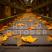 Fall2