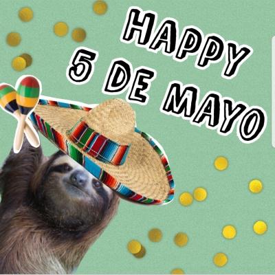 sloth5demayo